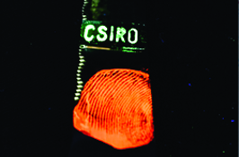 GLOWING FINGERPRINTS TO FIGHT CRIME CSIRO is now looking to partner with law enforcement agencies to apply the technique.