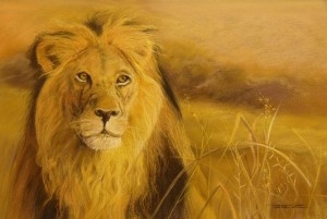 p10 King of the Plains by Jane Zadow, Artist of the Month at the Dayboro Community Art Gallery.